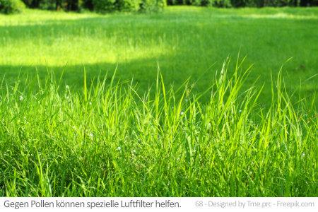 Eine grüne Wiese ist schön, doch Allergiker sind oft auf Luftfilter gegen Pollen angewiesen.
